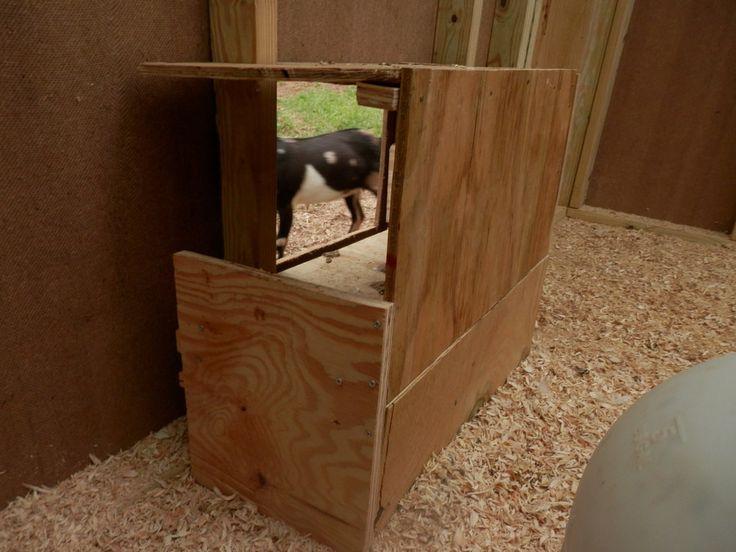 Goat Proof Chicken Coop Entrance Poop Door Made In A L