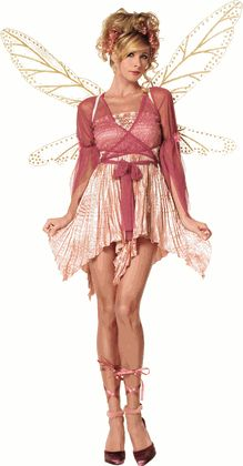 Sexy Pink Fairy Costume
