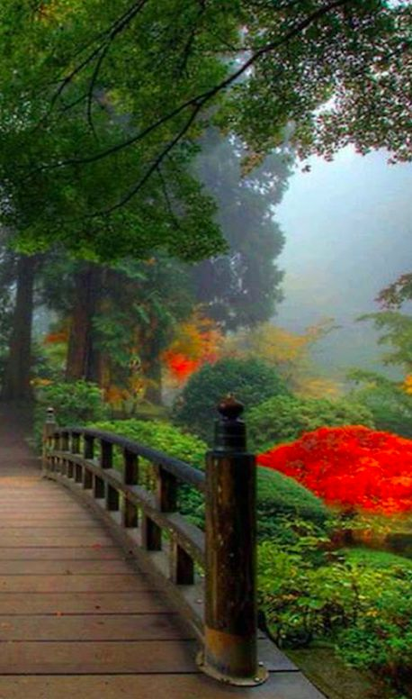 Portland Japanese Garden at Washington Park in Portland, Oregon • photo: David Gn on Flickr
