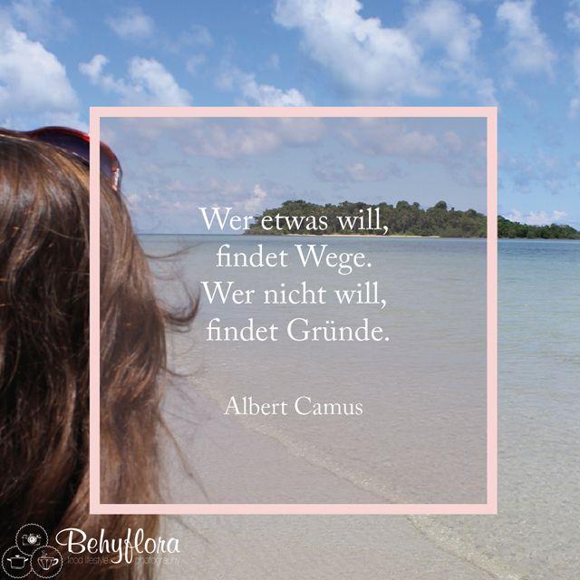 Albert Camus: Wer etwas will, findet Wege, wer nicht will, findet Gründe #camus #quote #motivation #wille #justdoit