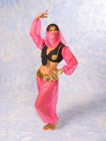 Nice Costumes Harem Girl Deluxe Costume just added...