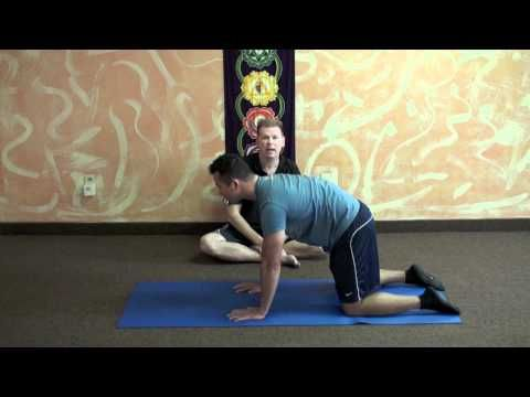 Yoga Exercises For Hip Dysplasia: These actually do immediately provide a liiittle relief for me..