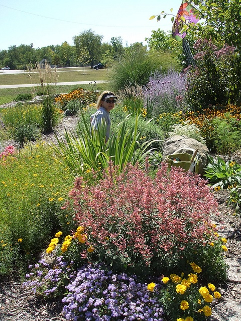 131 best images about Deer resistant gardens on Pinterest