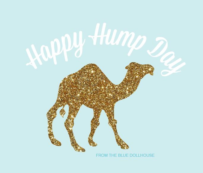 Happy Hump Day friends