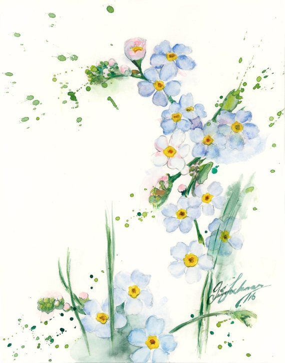 Limited Watercolor Painting Print Blue Flowers On Neutral White