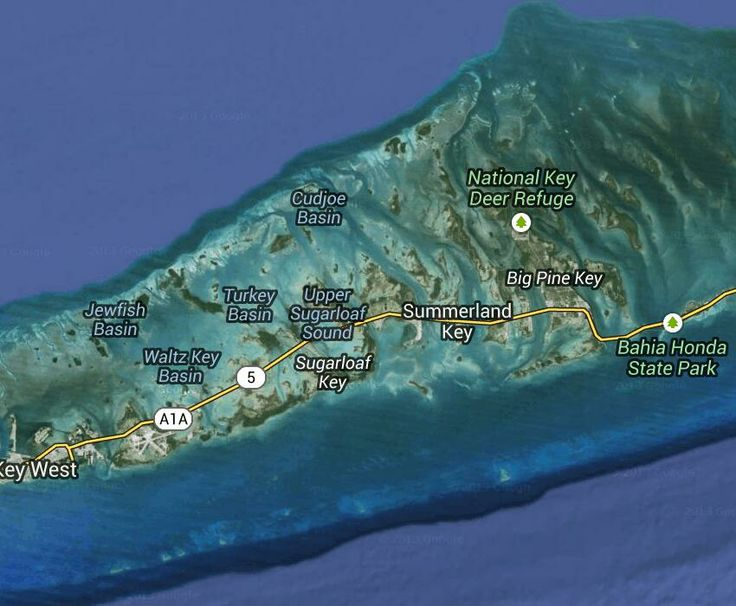 Paradise Found: Things to do in the Lower Keys | Florida Rambler