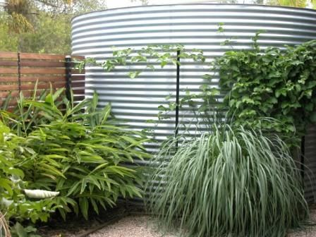 Garden Accessories -- Rain Water Tank to harvest and store water. Galvanized works well with screening plants.