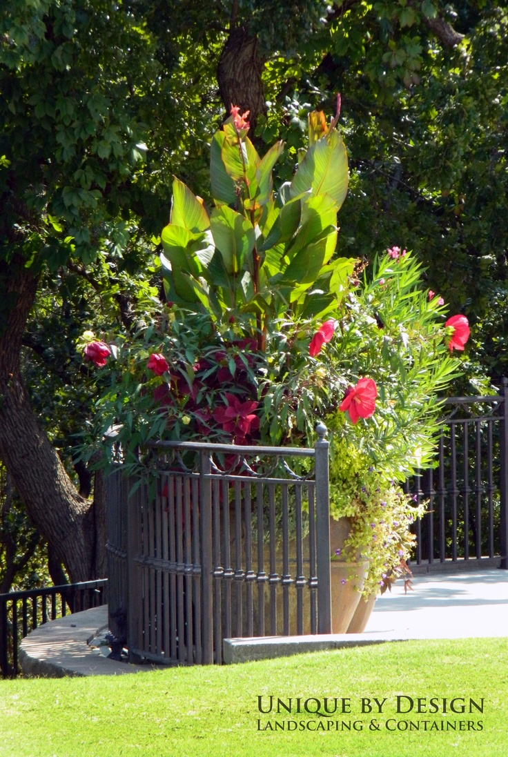 talk about a container garden