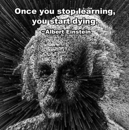 """""""Once you stop learning, you start dying."""" #Quote #Einstein via @Constanze_Wolff"""
