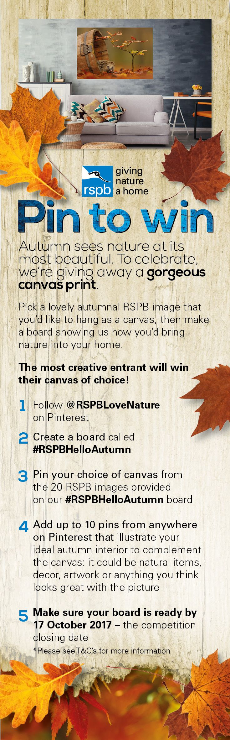Pin to Win a gorgeous canvas print worth up to £200 – simply create a #RSPBHelloAutumn Pinterest board, pin your choice of canvas from the 20 autumnal images provided on our #RSPBHelloAutumn board and then add in 10 or more pins that illustrate your ideal autumn interior. Closing date 17/10/2017. 2017, Contest, Fun, Photography, Home Inspiration, Giveaway, Competition, Prizes, Autumn, Decor, Aesthetic, Win