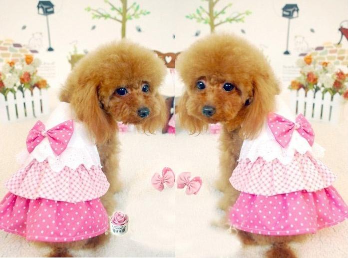 Dog Pet Rose Pink Dot Skirt White Dress Bow Tie Party Apparel Doggy Clothes   eBay