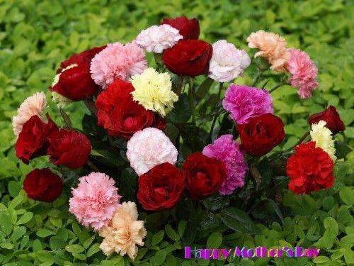 Beautiful-flower-bouquet