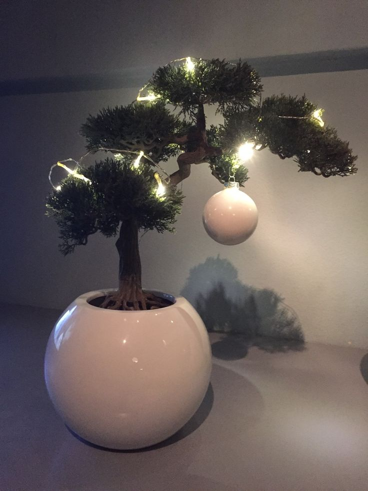 My Christmas tree for 2016 ! Keeping it round, white and plastic ;)