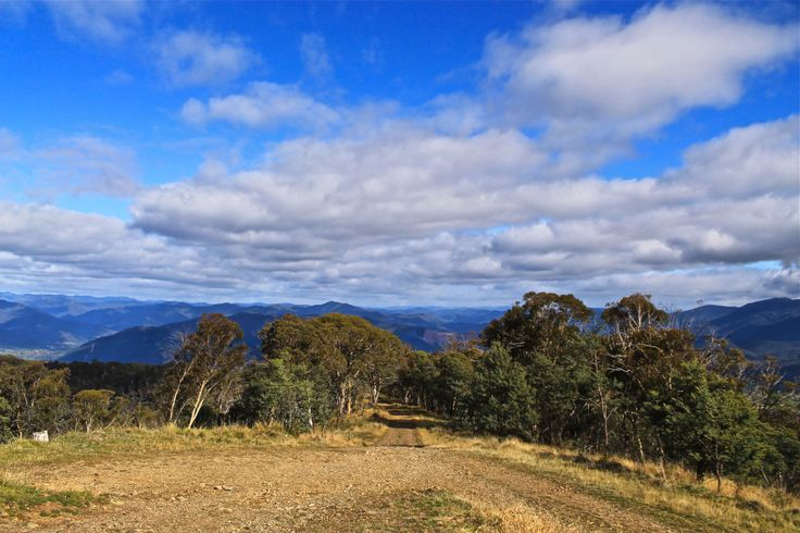 View from Mount Porepunkah, VIC