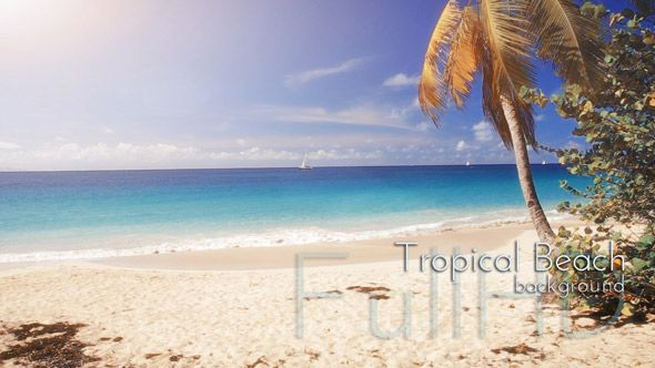 Caribbean Tropical Islands Nature FullHD Video Footages Collection by cinema4design