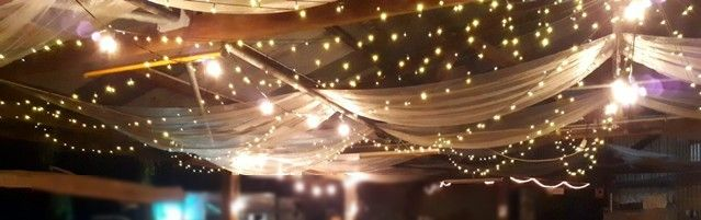 Fairy lights / String Party lights (all warm-white)