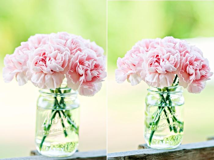 Carnations in Mason jar