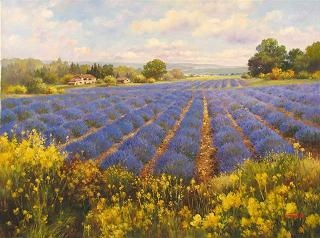 Lavender Fields Forever / Paul Guy Gantner