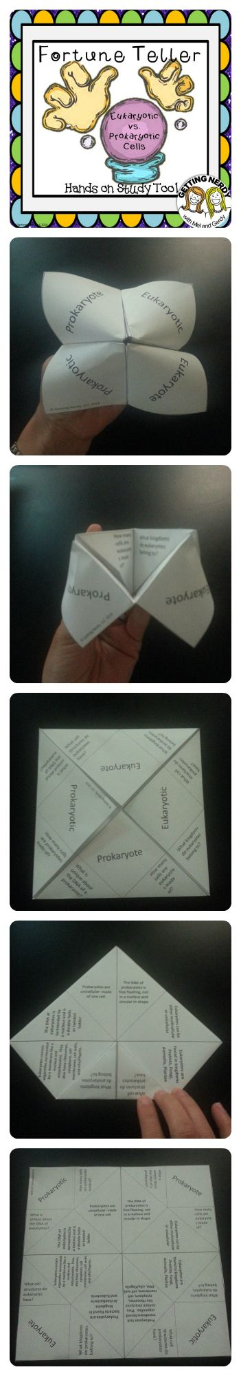 FREE Fortune Teller / Cootie Catcher for your Secondary science classes - comparing prokaryotes and eukaryotes. #gettingnerdy