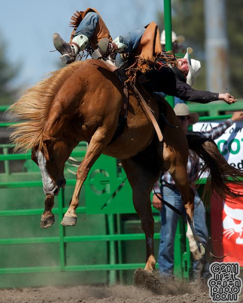 Steven Dent of Mullen, NE rides Bet on Me at the 93rd Annual Livermore Rodeo at Robertson Park in Livermore, CA. By Matt Cohen Photo