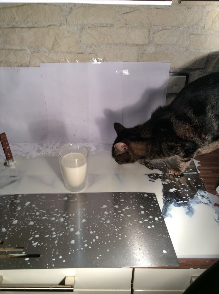 Fotoshooting in meiner Küche