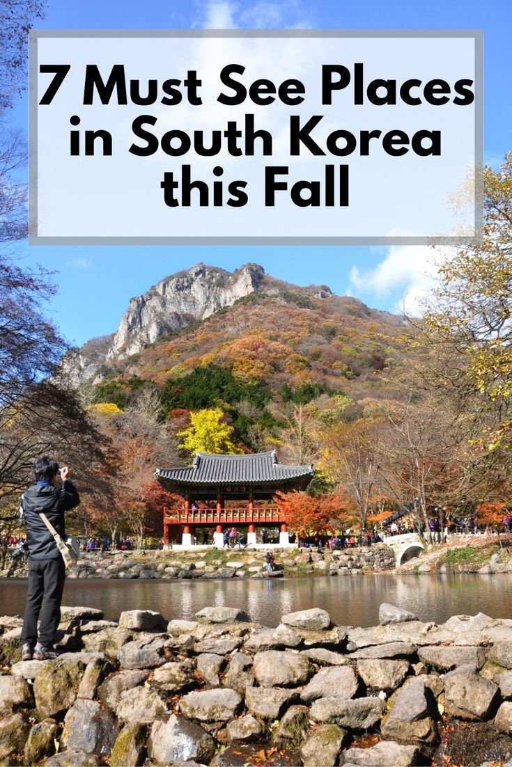 Places to visit near Gwangju South Korea this fall to see the autumn leaves. Temple, fortress, gardens and mountains. traveling vacation