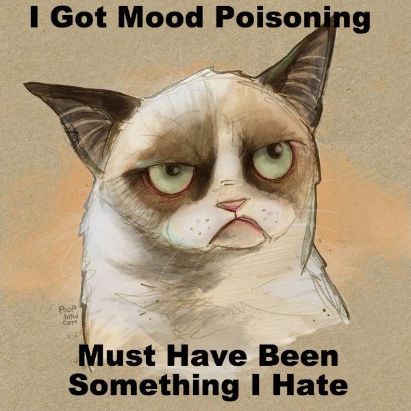 Cat Quotes: Grumpy's Got Food Poisoning