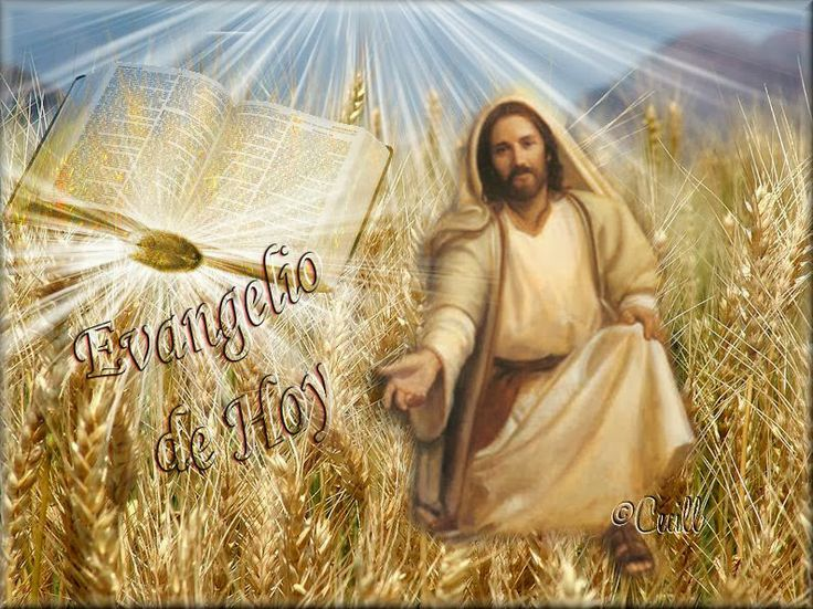 Lectio divina: Letio divina del 31 de Enero de 2014 Marcos 4,26-34