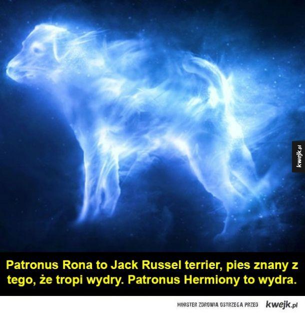 Garść ciekawostek o Harrym Potterze