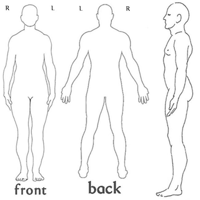 Doctor Body Diagram