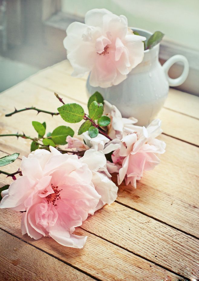 Classy Woman - cottage-garden-faith: It's the simple things in...