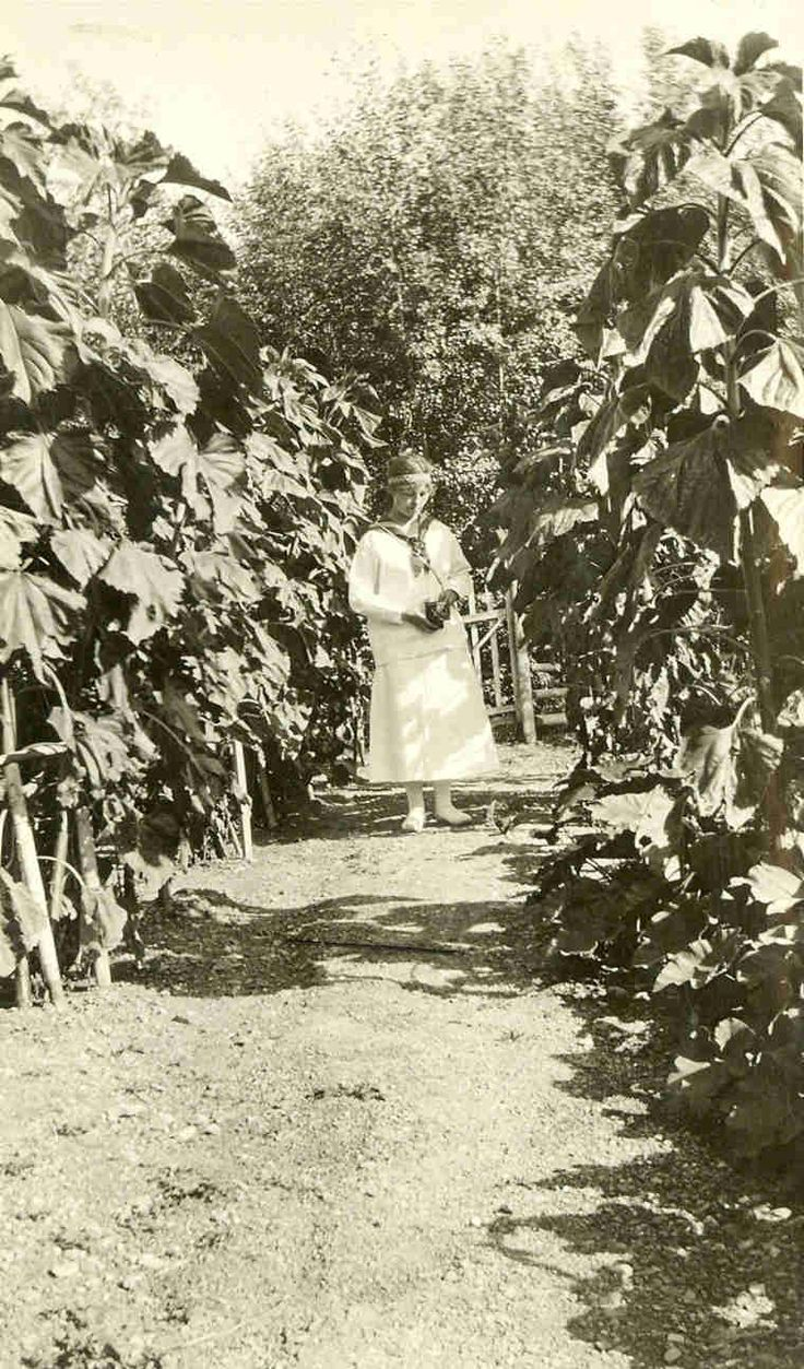 A photo of an unidentified woman in Angus McKay's garden at La Ronge. Taken during the journey of Christina Bateman and Annie McKay from Prince Albert to La Ronge, SK in 1919.