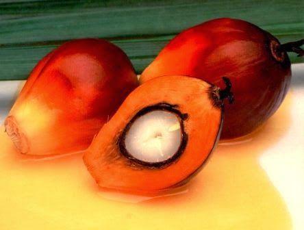 Mangiare Sano Si Può!: Ecco perchè bisogna evitare l'olio di palma