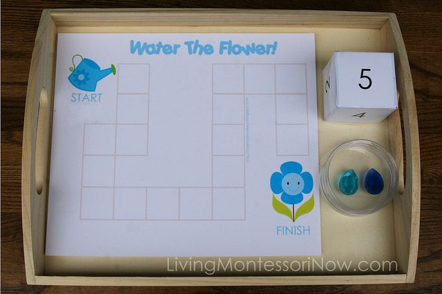 Water the Flower Game
