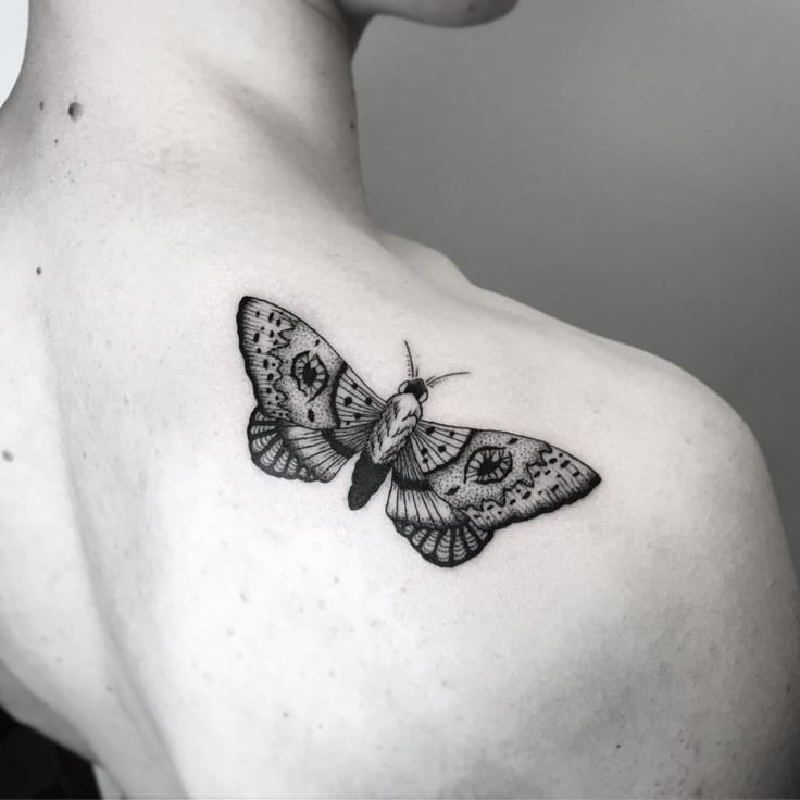Motte Tattoo Meaning Of The Motive And Some Of The Most Beautiful Moth Species Beautiful Meaning Moth Motive Tattoos With Meaning Tattoos Moth Tattoo