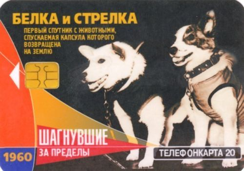 astronaut dog Layka Laika Belka Strelka dog in space FIRST USSR Pocket Calendar in Collectibles, Historical Memorabilia, Other Historical Memorabilia | eBay