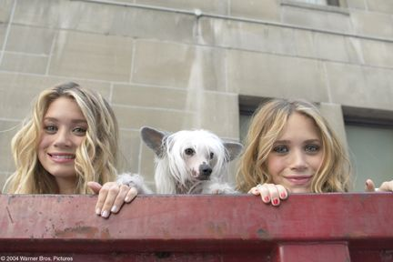 "New York Minute (movie) ASHLEY OLSEN and MARY-KATE OLSEN with REINALDO the dog, star in Warner Bros. Pictures' action comedy ""New York Minut..."