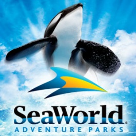 Sea World! I have the best memories from when my daughter was little from our visits to Sea World : )