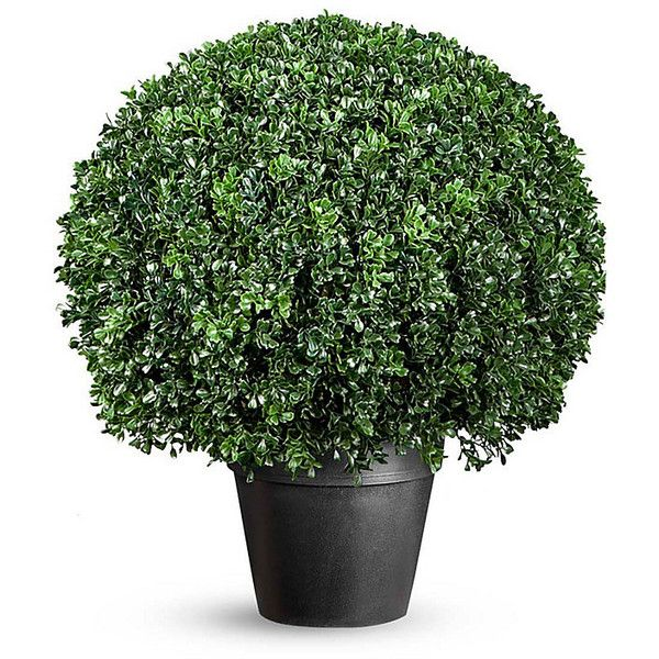 Boxwood Ball Artificial Topiary ($170) ❤ liked on Polyvore featuring home, home decor, floral decor, plants, flowers, decor, filler, artificial plants, fake plants and outdoor pots