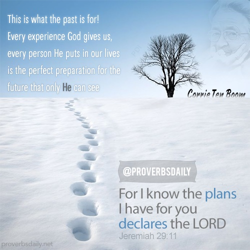 This Is The Site You Need To Look At Before You Start Your: 43 Best Bible Verses Images On Pinterest