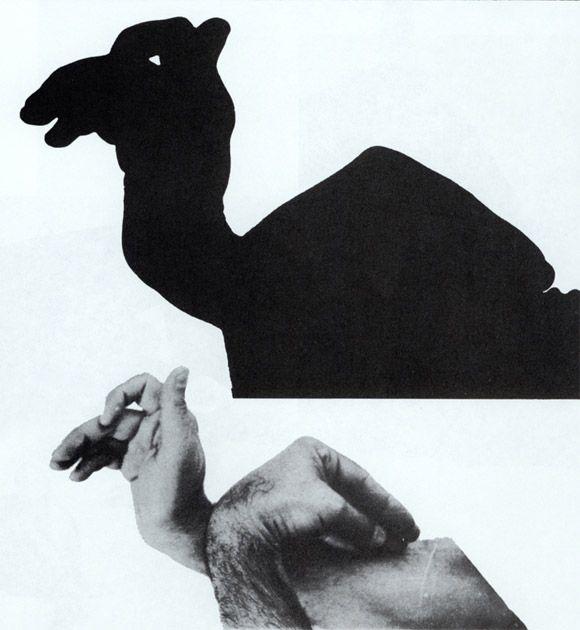 вот как фото животных руками тени твоя