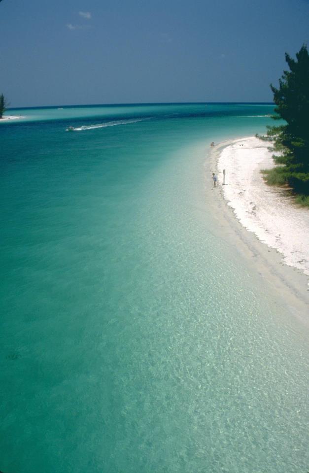 Anna Maria Island Florida Real Estate Listings