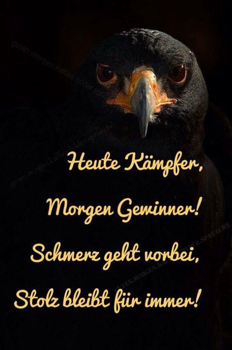 Stimmt genau ! #fail #geil #witz #ausrede #epic #funnypics #lustigesbild #sprüchezumnachdenken