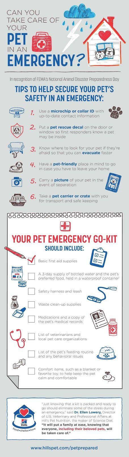 Be #PetPrepared! Include Pets In Family Disaster Preparedness Plans @HillsPet #sponsored