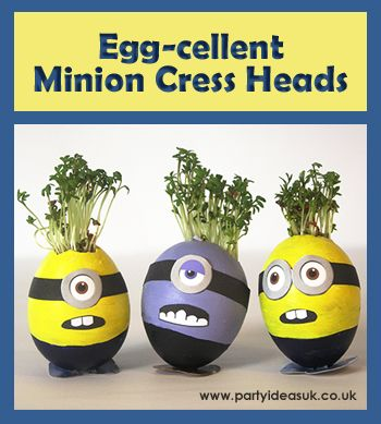 Minion Cress Heads, Click here for details on how to make them http://blog.partyideasuk.co.uk/minion-egg-cress-heads/#more-185 Easter craft ideas.