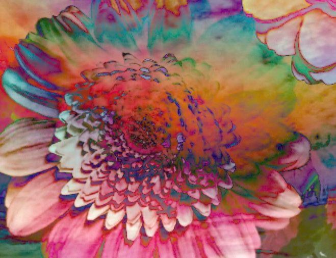 Purpletugboat (pureblindingcolour: the inner life of flowers ...