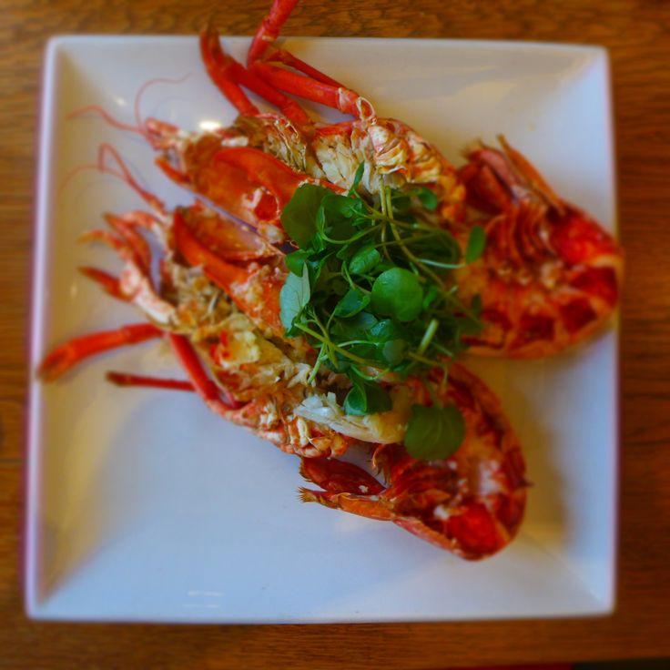 St. Margaret's Bay Lobster