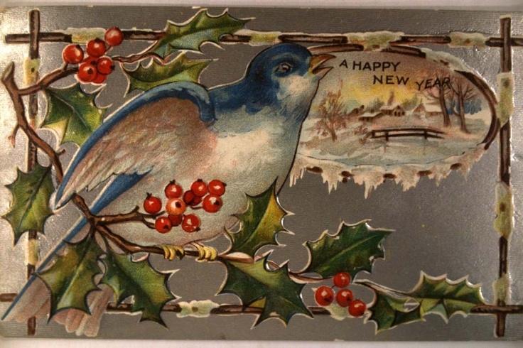 1910 Beautiful Blue Bird Great New Years Postcard Y3428