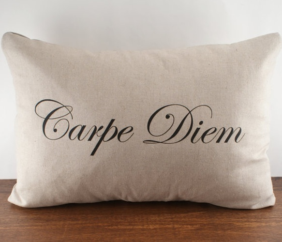 'Carpe Diem' cushion cover...It Means, Seize the Day!