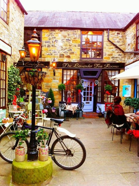would love a little place like this..... Lavender Tea Rooms in Bakewell, UK